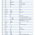 Vocabulaire JLPT N5